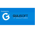 gulisoft it sulotions